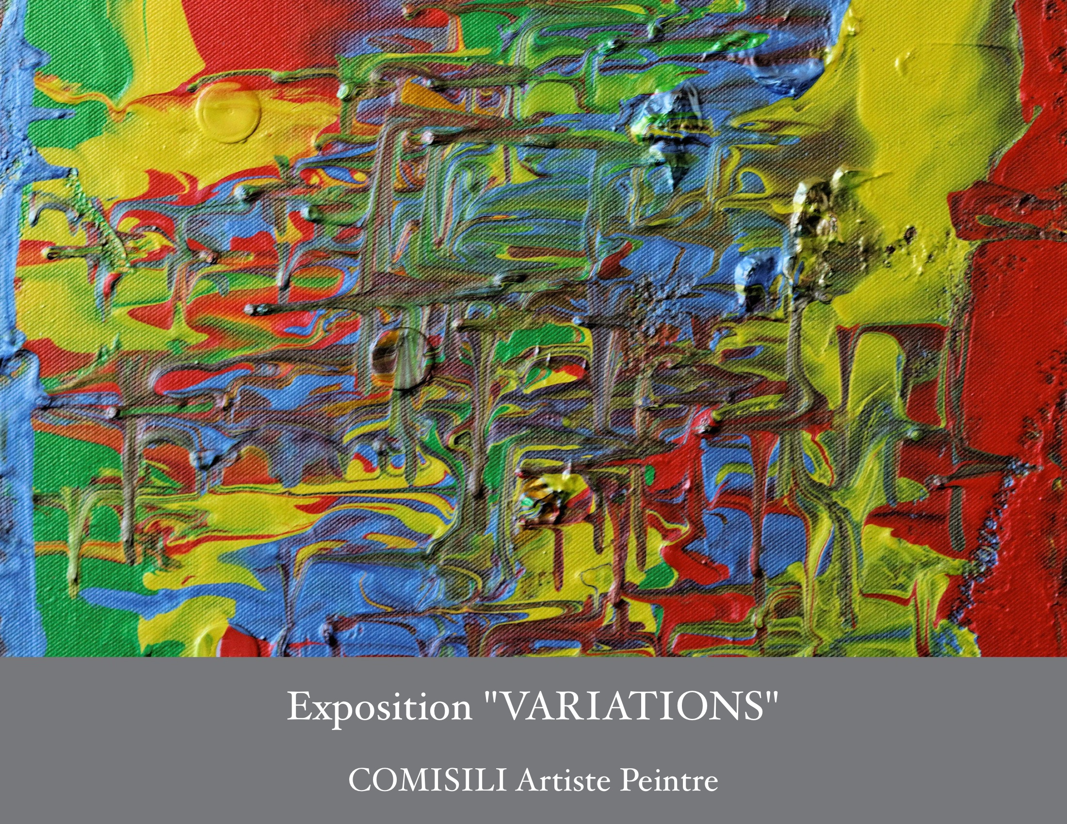 Catalogue Exposition Variations Comisili