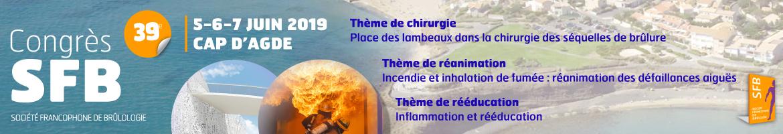 <p>Place des lambeaux dans la chirurgie des s&eacute;quelles de br&ucirc;lure / Incendie et inhalation de fum&eacute;e : r&eacute;animation des d&eacute;faillances aigu&euml;s / Inflammation et r&eacute;&eacute;ducation</p>