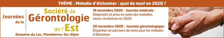 <p>Maladie d'Alzheimer</p>